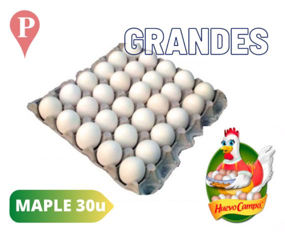 Huevos Blancos Grandes Huevo Campo Maple Carton